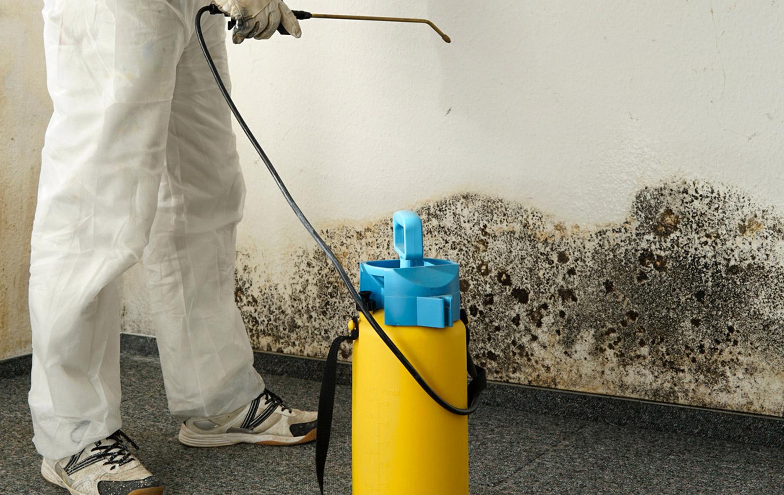 Les risques sanitaires sont réels dans le cas d'habitation Diogène, il est donc indispensable de faire appel à des professionnels pour débarrasser et nettoyer la maison.